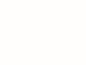 Virtuves darba virsma Snow White 8685 RS